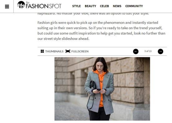The Fashion Spot